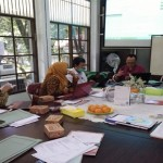Libraryums_audit2016